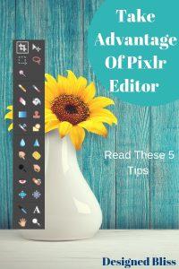 pixlr-editor-features-pin