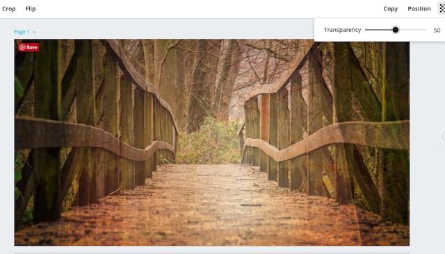 bridge-overlaid-with-lighted-woods-image