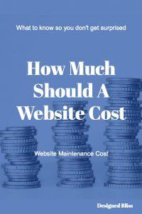 website-maintenance-cost-pin