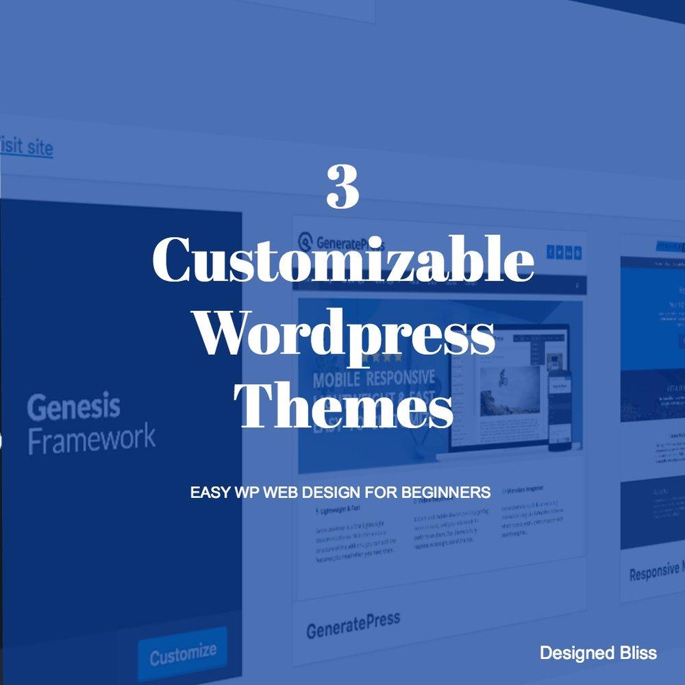 customizable wordpress themes